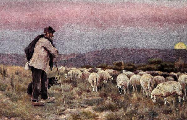 Oración al buen pastor